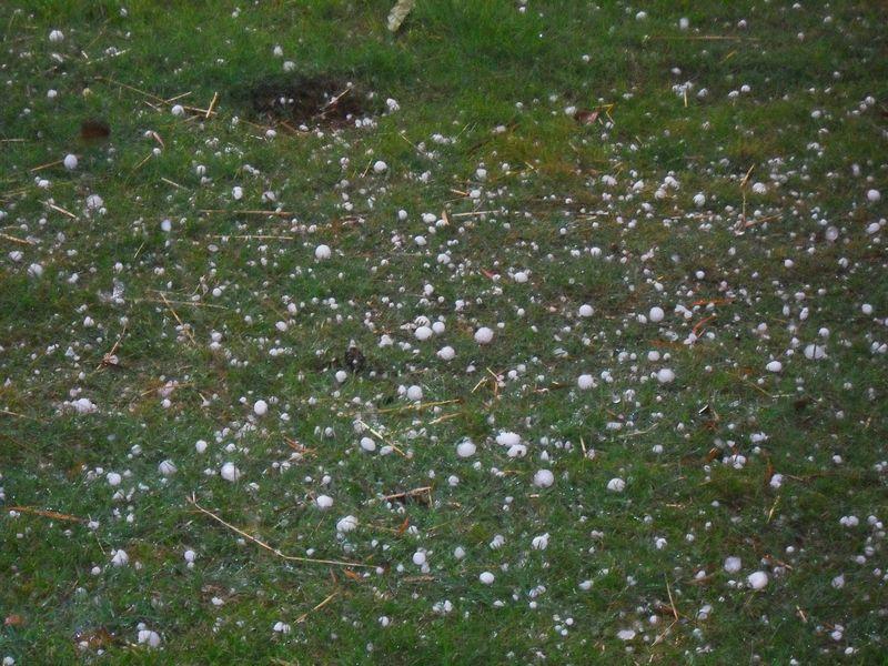Hail 2011 1